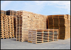 Pallet Central Enterprises and the Services We Offer